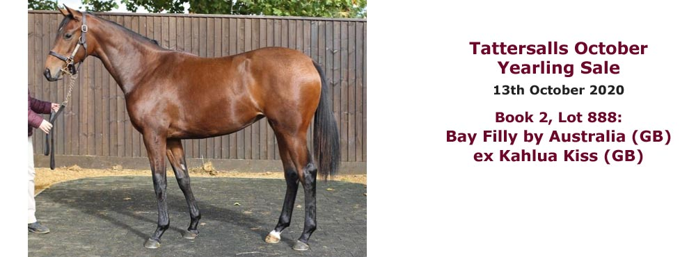 Bay filly by Australia ex Kahlua Kiss consigned by Heatherwold Stud to Tattersalls October Yearling Sales 2020