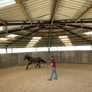 lunge ring at Heatherwold Stud