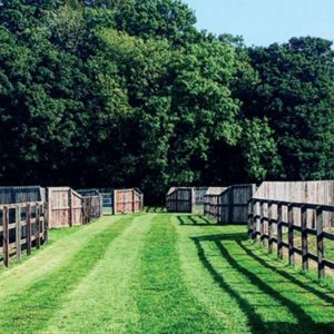 Nursery paddocks at Heatherwold Stud